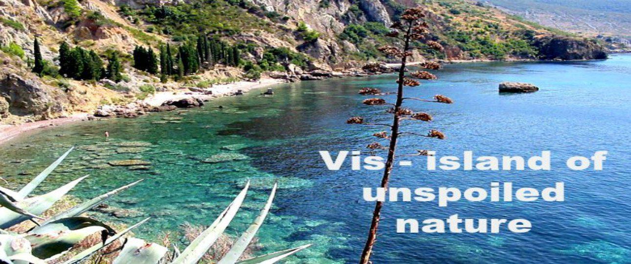 Vis island image