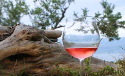 Solta wine tasting tour